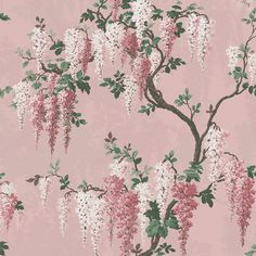Wisteria in Pink Bloom Floral Wallpaper By Woodchip & Magnolia Wallpaper Size, Wallpaper Samples, Pink Wallpaper, Pink Hallway, Pearl Lowe, Brick Effect Wallpaper, Botanical Wallpaper, Design Repeats, Concept Board