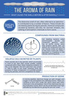 compoundchem: The third graphic in the 'Aroma Chemistry' series looks at the chemical compounds that cause the smells before & after rain: http://wp.me/p4aPLT-fU
