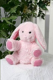 Pink Bunny - 8 Inch    The Kit includes:  The animal skin  Stuffing  A Wish Star Adoption certificate  Full instructions