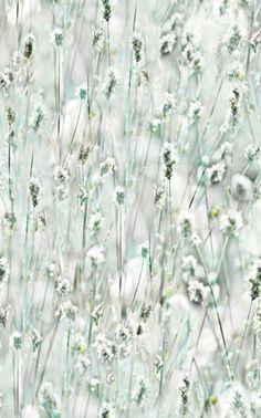 Autocolant flori de gradina 45 cm