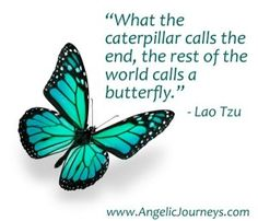 Love this quote from Lao Tzu and the beautiful butterfly from my friend Maryellen at www.angelicjourneys.com.