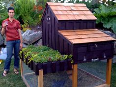 Another saltbox chicken coop