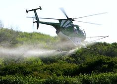 """FARMERS are being forced to use poisonous chemicals and revert to outdated tilling methods to cope with a growing breed of herbicide-resistant """"super weeds"""".  The problem, triggered by overuse of the popular weedkiller Roundup, poses health and environmental risks, including soil pollution and toxicity to humans, and is substantially driving up farm costs."""
