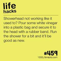Make Your Shower Head Like New   1000 Life Hacks   Bloglovin'
