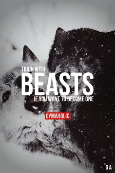 Train With Beasts If you want to become one. http://www.gymaholic.co