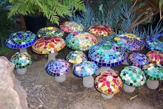 Concrete mosaic mushrooms and toadstools