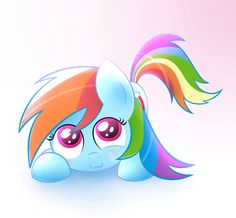 Little rainbow dash