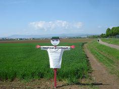 A proximité de Dachstein en Alsace