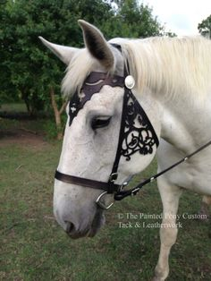 Brimstone Replica bridle from Outlander by ThePaintedPonyTack