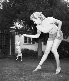 "MARILYN WAS A CHIHUAHUA LOVER ~ ~Marilyn Monroe owned lots of pets, including a cat, a bird, a horse and several dogs, one of which was a Chihuahua she obtained in 1948 to celebrate signing her breakthrough six-movie contract with Columbia Pictures. Monroe named the Chihuahua Josepha, but the dog was more popularly known to Monroe, her fans and the press by a nickname: ""Choo Choo."""