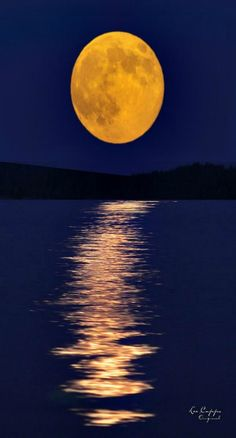 Full Harvest Moon rising on Lake Jordan, North Carolina, USA