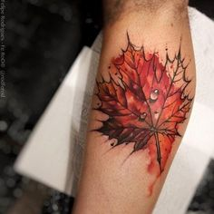 Canadian Maple Leaf Tattoo with raindrops