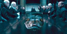 New 'Fantastic Beasts: the Crimes of Grindelwald' Trailer Confirms Voldemort's Snake Nagini Was a Actually a WITCH Harry Potter Spells, Harry Potter Universal, Voldemort, Hogwarts, Deathly Hallows Part 1, Crimes Of Grindelwald, Pet Snake, Slytherin Aesthetic, Slytherin
