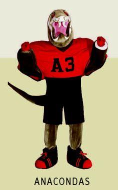West Point Cadet Company A3 mascot - Go Anacondas!