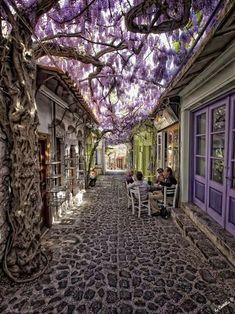 Molyvos, Lesvos, Greece. I really need to go to Greece some day.