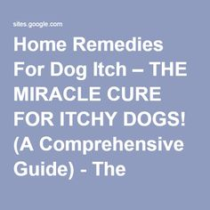 Home Remedies For Dog Itch – THE MIRACLE CURE FOR ITCHY DOGS! (A  Comprehensive