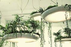 HOME & GARDEN: Babylon Light : le lustre jardinière