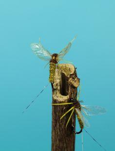 Reel Wings Yellow Drake
