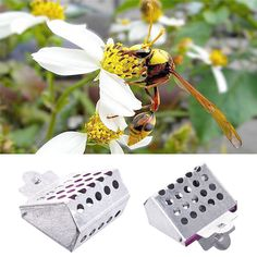 Metal Queen Cage Clip Bee Catcher Cage Beekeeper Beekeeping Equipment Tool (eBay Link)