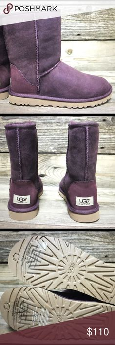 UGG Classic Short Port Purple Sheepskin Boots 6 New with box! UGG Shoes Winter & Rain Boots