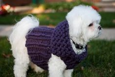 Mia & Maddie Designs: Freebie: Ribbed Sweater Vest