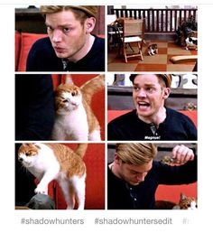 Shadowhunters. I thought he hated ducks, not cats