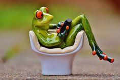 Alexas_Fotos   Pixabay - 40