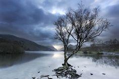 Dawn At Llyn Padarn - Landscapes