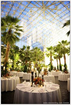 Tropical wedding in the city :D    Crystal Gardens Navy Pier