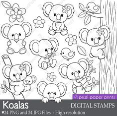 Koalas Digital Stamps Clipart Line art by pixelpaperprints