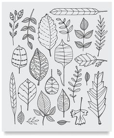 Great coloring books for adults -- Themes like Botanicals, Circus, Carnivale, Geometric Patterns, Mid-Century Modern Mania, etc.