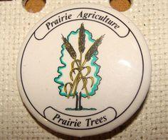 Prairie Agriculture | saskhistoryonline.ca