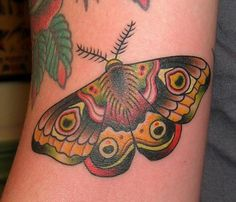 Traditional Gypsy Moth Tattoo Colored moth tattoo picture
