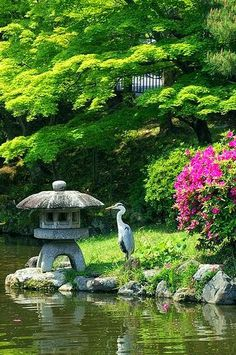 Garten in Tokyo