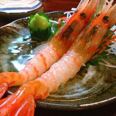 ボタンエビの刺身。 Shrimp Sasimi. #food #yummy #sashimi #shrimps #shrimp #japanesefood #おいしい #美味しい #海老 #刺身 #日本料理 - @s_shota- #webstagram