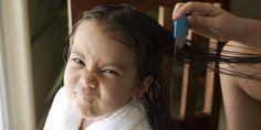Los piojos suelen aparecer en niños entre los 3 y los 12 años.
