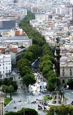 De #Ramblas is zonder meer een van de populairste straten van #Barcelona en is ruim anderhalve kilometer lang.