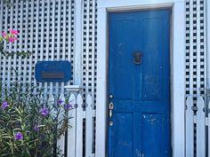 Hot Hot Heat Part Adventures in Key West – TheGardenGeneralist Tall Cabinet Storage, Locker Storage, Independence Day Holiday, Take A Break, Key West, Houseplants, Container Gardening, Past, Around The Worlds