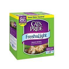 Top 10 Best Cat Litter Brands | PetAnimalGuide.com