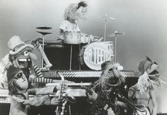 Teeth & the Electric Mayhem Dream Concert, The Dark Crystal, Jim Henson, Kinds Of People, Rock Bands, Puppets, Disney, Artist, Street