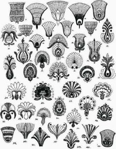 Folk Embroidery Patterns Hungarian pattern flower motifs various regions Motifs Art Nouveau, Design Art Nouveau, Motif Art Deco, Art Nouveau Flowers, Hungarian Embroidery, Folk Embroidery, Embroidery Patterns, Hungarian Tattoo, Flower Embroidery
