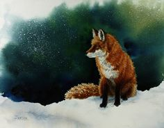 Red Fox With Dark Green Background Watercolor Painting   by deb watson