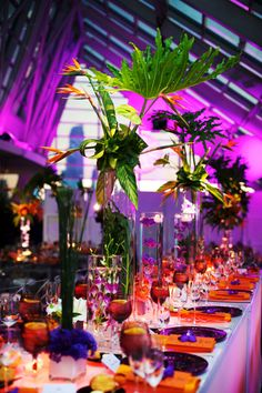 Exotic floral and fauna transform the Adler Planetarium into a tropical party oasis. Floral & Decor: http://KehoeDesigns.com, Photography: Kevin Weinstein, Lighting: Frost, Planning: Frank Event Design