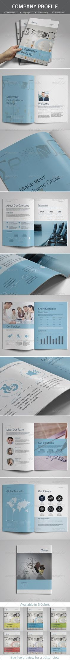 Professional Company Profile Brochure Template Brochure template - professional business profile template