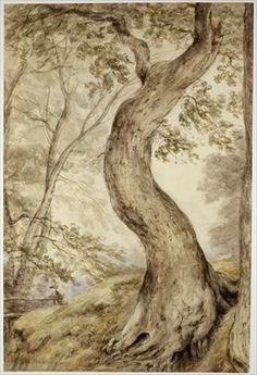 Giclee Print: Tree at Helmingham Art Print by John Constable by John Constable : Landscape Drawings, Landscape Paintings, Tree Paintings, English Romantic, Art Through The Ages, English Artists, Tree Photography, Tree Art, Giclee Print