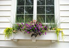 decorating outside the house with window frame | ... Window Box Garden Design Come With Ivory Wood Frame Window With Clear