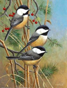 """Chickadees""7 x 9 acrylic -NORTH AMERICAN ORIGINALS"