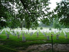Arlington National Cemetery...To all the veterans and those who died for this country, thank you for your service