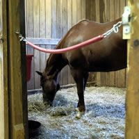 EquiSearch's Ask the Vet: Stall Flooring