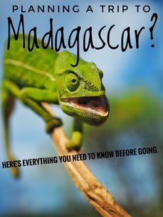 Madagascar the perfect destination in Africa for the adventures traveler and travelers that want to get away from mass tourism and want to see wildlife and nature